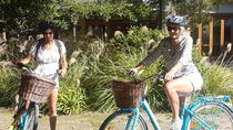 Half Day Guided with Half Day Self-Guided Marlborough Wine Region Bike Tour, Blenheim, Wine Tasting ...