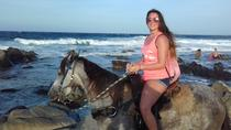 Private Horseback Ride and Island Tour in Aruba, Aruba, Horseback Riding