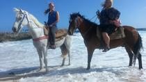 Small-Group Horseback Ride and Island Tour in Aruba, Aruba, Horseback Riding