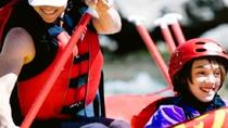 Full-Day Bighorn Sheep Canyon Rafting Tour in Colorado, Cañon City, White Water Rafting