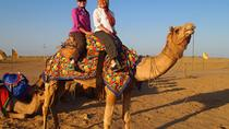 1 Night Camel Safari Tour In Jodhpur, Jodhpur, Nature & Wildlife