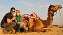 Camel Safari Day Tour a Jaisalmer, Jaisalmer