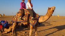 Private Tour of Bishnoi Villages with Camel Safari, Jodhpur, Nature & Wildlife