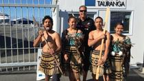 Rotorua Full Day Tour Including Maori Culture Geysers Mudpools and Mt Maunganui, Tauranga, Family...
