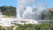 Shore Excursion: Fully Guided Rotorua Sightseeing Tour including Tauranga and Mt Maunganui, ...