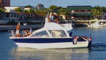 Private Catamaran Cruise in Punta Cana, Punta Cana, Day Cruises