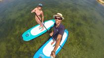Door County Paddle Board Rental, Wisconsin, Stand Up Paddleboarding