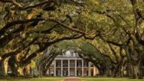 Oak Alley or Laura Plantation Tour from New Orleans, New Orleans, Plantation Tours