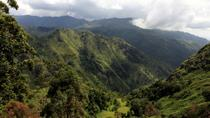 8-Day Sri Lanka Experience in a Homestay from Colombo , Colombo, Multi-day Tours