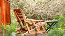 All Inclusive Leopard Nest Luxury Glamping experience in Yala, Colombo, Multi-day Tours