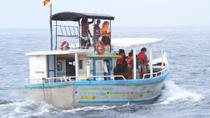 Deep Sea Fishing and Whale Watching Day Trip, ゴール