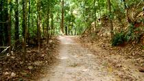 Private Bird watching and Nature trekking in Udawatte Kele Sanctuary, Kandy, 4WD, ATV & Off-Road ...