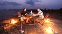 Private Overnight Beach Camp and Yala Safari from Colombo, Colombo, Nature & Wildlife