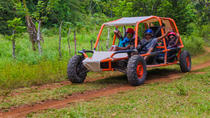Family Buggy Adventure in Punta Cana, Punta Cana, Ziplines