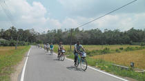 Half-Day Lagoon and Village Cycling Tour in Galle, ゴール