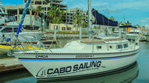 Private 30 Feet Sailing Experience in Los Cabos, Los Cabos, Snorkeling