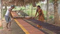 Private Pochampally Textile Village Tour from Hyderabad, Hyderabad, Day Trips