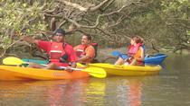 Mangroves Magic Goa Kayaking Experience, Goa, Kayaking & Canoeing