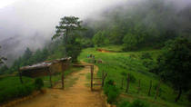 Private Champadevi Hiking Day Trip From Kathmandu, Kathmandu, Hiking & Camping