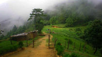 Private Full-Day Champadevi Hiking Tour From Kathmandu, Kathmandu, Hiking & Camping