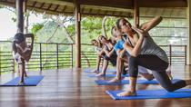 4 Days 3 Nights Personal Yoga Synergy on Samui, スラー ターニー