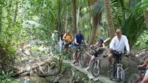 Colors of Bangkok Bicycle Tour, Bangkok, Bike & Mountain Bike Tours