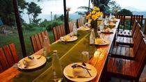 Evening Samui Adventure Dinner, Surat Thani, 4WD, ATV & Off-Road Tours