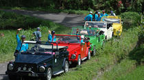 Full-Day Bali Contrasts Tour by Classic VW, Ubud, Full-day Tours