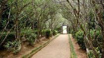 Full-Day Bike Tour of Hue's Aristocratic Garden Houses, Hue, Full-day Tours