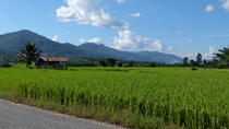Full Day Explore the Local Life in Phrao, Chiang Mai, Day Trips