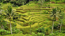 Full-Day Ubud and Beyond Tour Including Lunch, Ubud, Full-day Tours