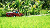 Full Day West Bali Discovery by VW, Ubud, Day Trips