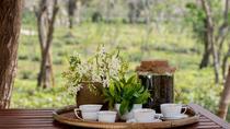 Half Day Araksa Tea Garden