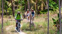 Half Day Eco-Explorer Koh Phangan by Bicycle (Classic), Surat Thani, Bike & Mountain Bike Tours