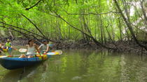 Half-Day Krabi Ao Tha Lane Nature Reserve by Kayak Including Lunch, クラビ