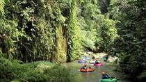 Half-Day River Tubing on the Penet River , Bali, Tubing