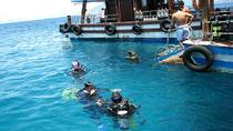 Half-Day Scuba Diving in Nha Trang, Nha Trang, Scuba Diving