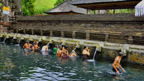 Private Full-Day Shaman Meet and Heal Program, Ubud, Cultural Tours