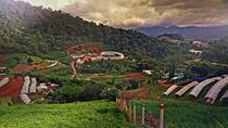 Private Half-Day Hmong Nong Hoi Village and Botanic Garden in Chiang Mai, Chiang Mai, Private ...