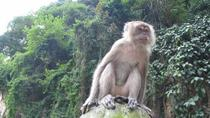 Private Tour: Half Day Batu Caves Tour, Kuala Lumpur, Private Sightseeing Tours