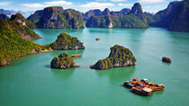 Full Day Boat Trip from Halong City