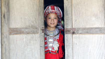 4-day Ha Giang: Trekking Hoang Su Phi Terraced Fields & Homestay, Hanoi, Cultural Tours