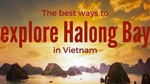 Halong 5hrs cruise -the best journey in Halong Bay -Luxury Group tour from Hanoi, Halong Bay, Day...