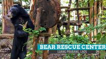 PAK OU CAVES, KUANG SI WATERFALL & BEAR RESCUE CENTER - Luang Prabang full day, Luang Prabang, ...
