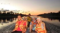 2-Day Wildlife Observation at Tamshiyacu Reserve with Curassow Amazon Lodge, Iquitos, Multi-day...