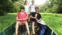 3-Day Wildlife Observation Tour at Tamshiyacu Reserve with Curassow Amazon Lodge, Iquitos, ...