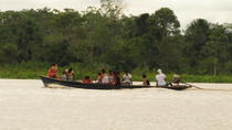 4-Day Wildlife Tour at Tamshiyacu Reserve, Iquitos, null