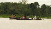 Multi-Day Wildlife Tour at Tamshiyacu Reserve with Curassow Amazon Lodge, Iquitos, Multi-day Tours