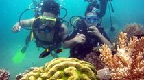 Nha Trang Half-Day Diving and Photo Underwater, Nha Trang, Photography Tours
