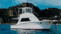Private Boat Trip from San Juan del Sur